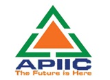 APIIC_indianbureaucracy