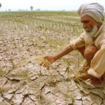 barren-farmland-indianbureaucracy-india- punjab farmer