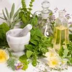 Herbal Plant_indianbureaucracy