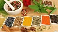 Unani Medicine_indianbureaucracy