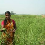 Measures taken for Upliftment of Women in Agriculture Sector