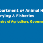 Department of Animal