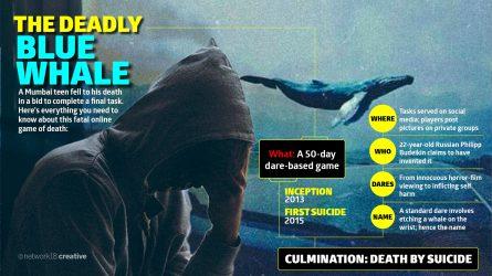 Gujarat announces 1 lakh reward to find Blue Whale curators