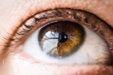 Genetic treatment for blindness