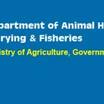 Department of Animal Husbandry
