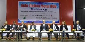 Indo-Italian Metal Hub