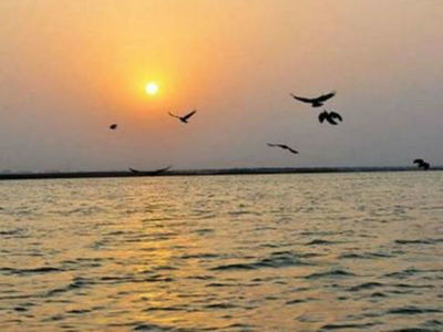 Project to Control Pollution of River Sal, Goa