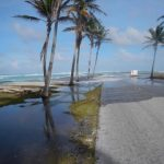 Many low-lying atoll