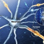 Artificial synaptic device