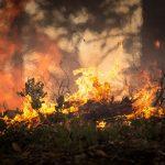 US wildfire smoke