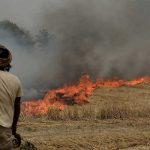 India's stubble burning air pollution causes USD 30 billion economic losses, health risks
