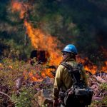 Fundamental challenges of living with wildfire