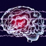Memories are strengthened via brainwaves