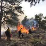 A drier future sets the stage for more wildfires
