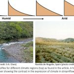 Climate signature identified in rivers globally