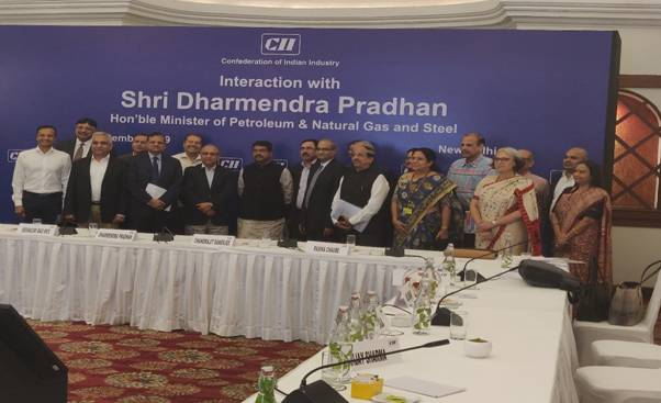 harmendra Pradhan holds consultations with CEOs of steel industry