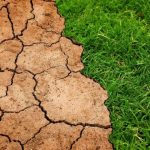Believing in climate change doesn't mean you are preparing for climate change