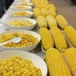 Sweet corn growers, processors