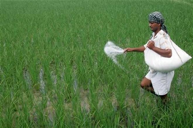 Cash transfer of fertilizer subsidy
