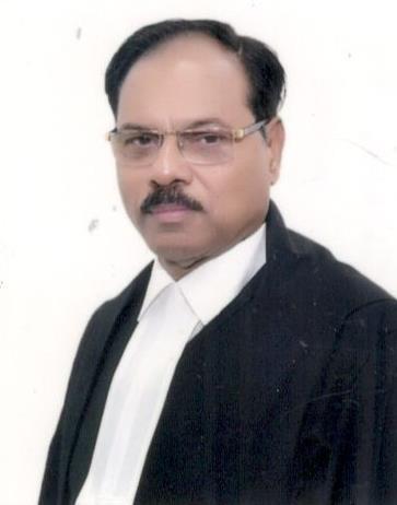 Justice Shekhar Kumar Yadav