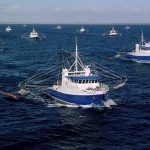 Vessel Monitoring Systems (VMS)