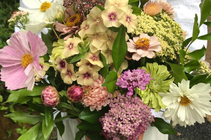 When flowers reached Australia