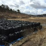 Lessons learned from an extraordinary case of soil decontamination