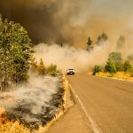 POSTECH study says Global warming is the kindling that caused extensive wildfire