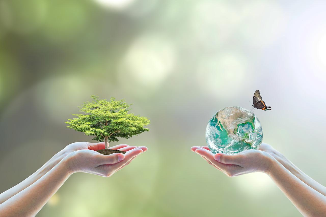 Transformative change can save huTransformative change can save humans and natured nature